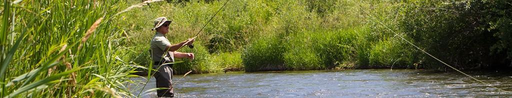 fishing_banner_sm
