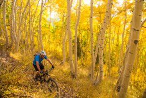 mountain biking Park City, UT