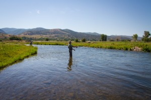 Fly fishing on the weber river