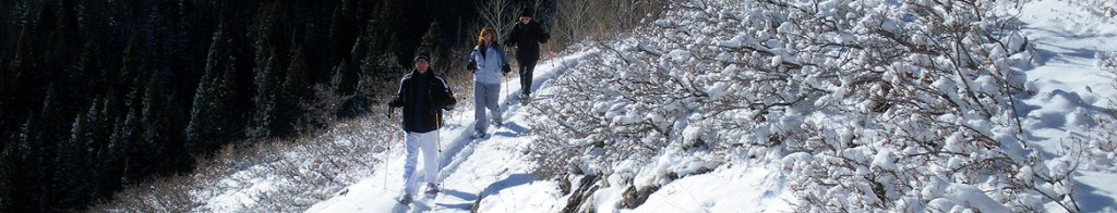 PArk City snowshoeing basics