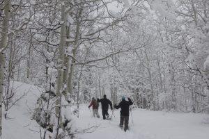 Snowshoe tours, Park City, Utah