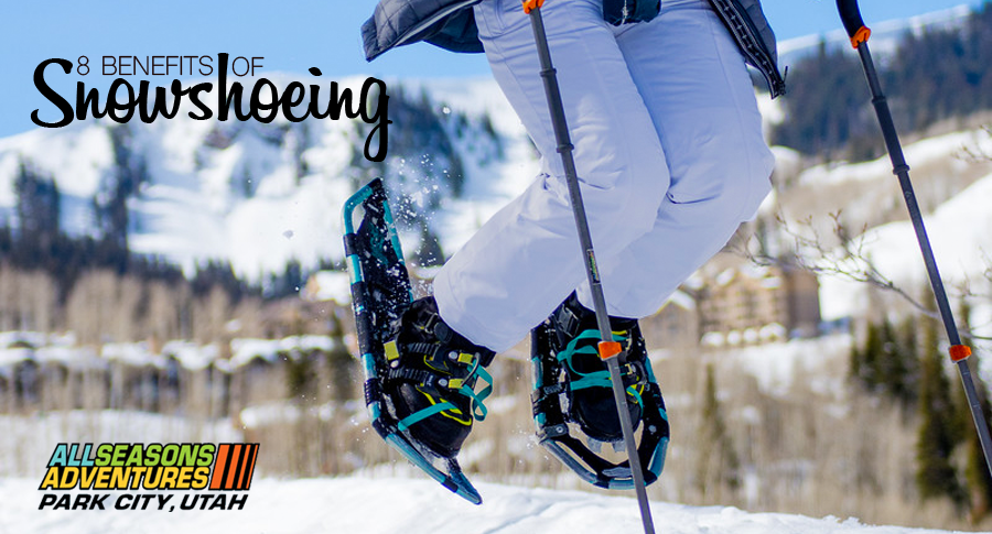 Benefits of Snowshoeing