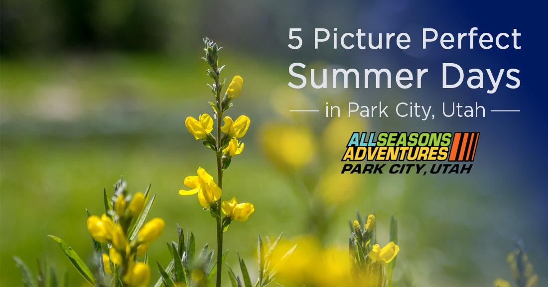 Perfect Summer Days Park City