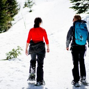 Snowshoe Utah