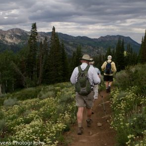 Guided hikes Uinta National Forest