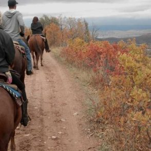 horseback-trail-riding-fall
