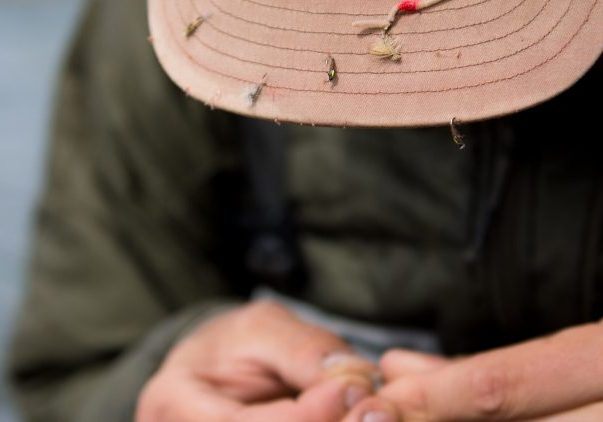 Utah Fly Fishing License Information