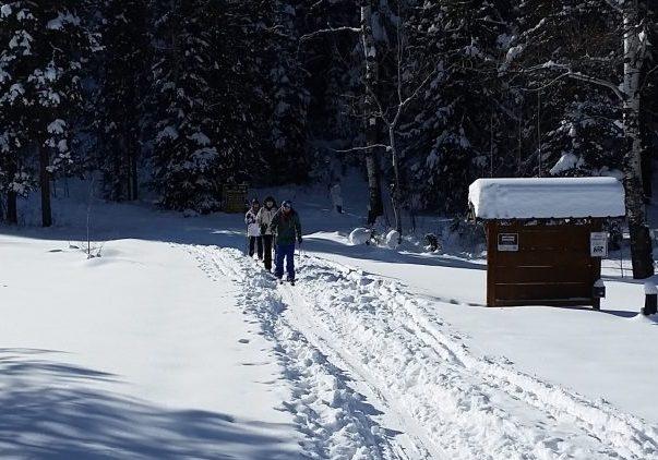 cross country skiing 101