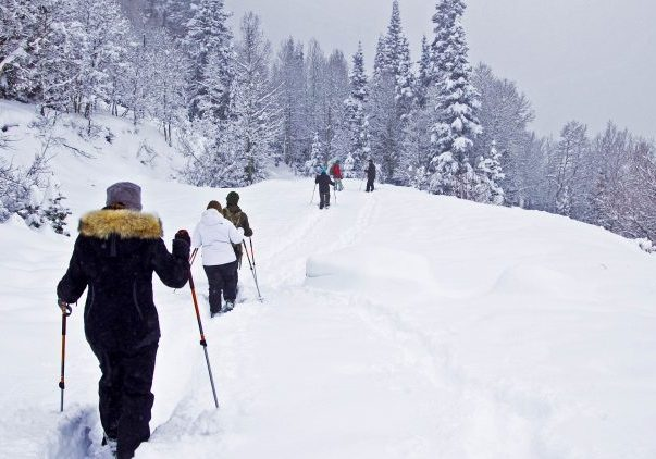 Guided Snowshoe Tours Park City Utah